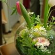 春の庭~先生の作品~